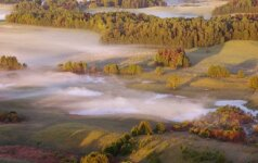 Saugomų teritorijų tvarkymui - pusšimtis milijonų eurų