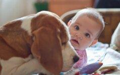 Paslėpta kamera parodė, ką paliktas vienas šuo veikia su kūdikiu