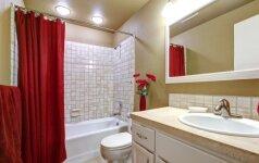 GALERIJA: 60 idėjų, kaip nenuobodžiai įrengti vonios kambarį