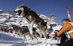 Ar riebalai kenkia šunims?