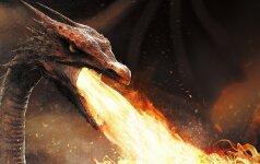 Ką sako mumyse gyvenantys vidiniai drakonai