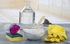 10 būdų, kaip panaudoti maistinės sodos miltelius darže bei buityje