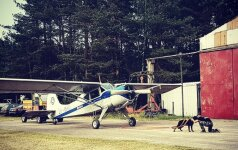 Keturkojis rekordininkas stebina pasaulį: lietuvio šuo tempia lėktuvą