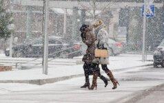 S. Paltanavičius: žiema gali atsisukti savo lediniais dantimis