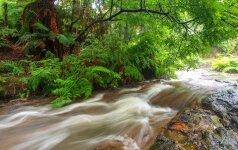 Cropp upė
