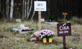 Gyvūnų kapinių Panevėžyje idėja – vis dar įstrigusi mirties taške