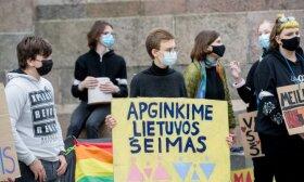 Politikams įteikė tyrimą dėl tos pačios lyties kartu gyvenančių porų: vienas Seimo narys tikina, kad jo nuomonę pakeistų tik avarija