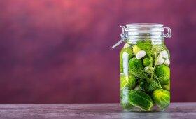 Rauginti agurkėliai, kuriems nėra lygių