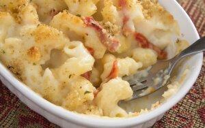 Makaronų apkepas sūrio padaže ir traškia plutele