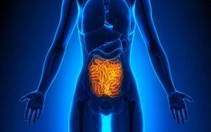 Įrodyta: žarnyno problemas ir vėžį galima pažaboti be jokių vaistų
