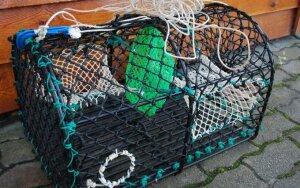 Lietuviai Norvegijoje šiuo prietaisu gaudo krabus