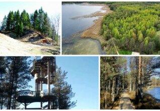 Lietuvos vietos, kurios užgniaužia kvapą (Creative Commons, VSTT ir regioninių parkų nuotr.)