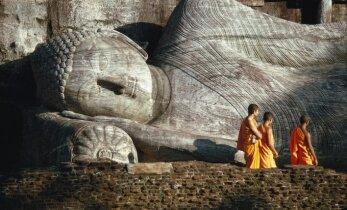 Žymiausias Šri Lankos turistinis objektas vilioja didžiulėmis Budos statulomis ir laukinių makakų populiacija