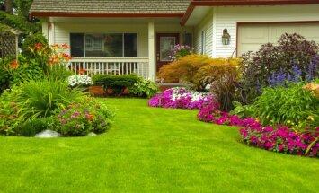 Kaip sukurti svajonių sodą: patarimai norintiems gyventi gražiai