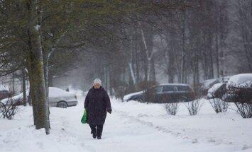 A senior citizen in Vilnius