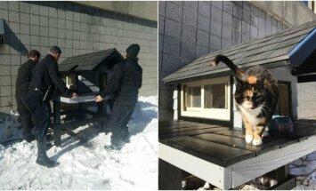 Bostono pareigūnai pastatė katei namą