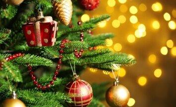Kaip puošti, kad kalėdinė eglutė atrodytų gražesnė, puošnesnė