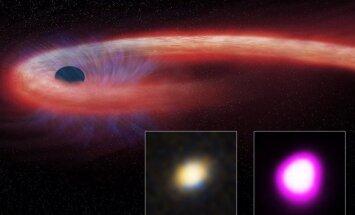 Juodoji bedugnė, NASA/CXC/M.Weiss nuotr.