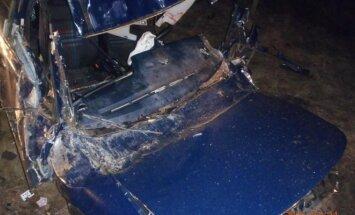 VW Passat vertėsi ir tėškėsi į medį, vairuotojas pats išlipti nebegalėjo