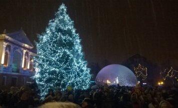 Klaipėdos Kalėdų eglės įžiebimas