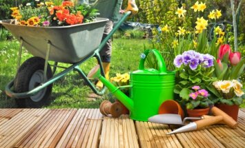 Pats metas pasiraitoti rankoves: gegužės mėnesio darbai sode ir darže