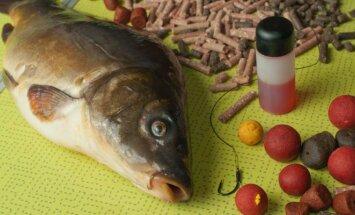 Sugauta žuvis