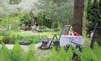 Birželio mėnesio MANO NAMAI numeryje – naudingi patarimai, kaip kitaip įsirengti sodybą ir terasą