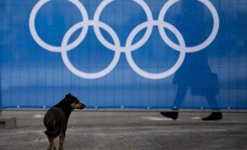 Benamis šuo Sočyje