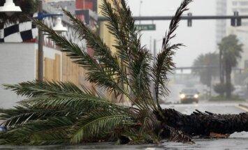 Uraganas Matthew Floridoje