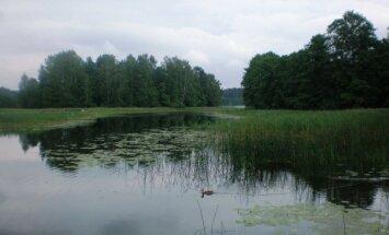 Ežero pelkėjimas
