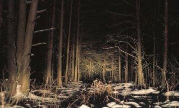 Ugnius Gelguda. Paklydėlius baudė sniegas ir šaltis