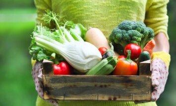 Keisčiausių formų daržovės: ar jos tikrai užaugo Lietuvoje?