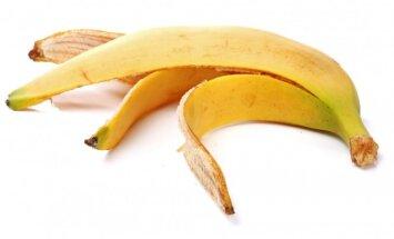 Netikėti būdai, kaip panaudoti banano žievę sodininkystėje