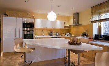 Virtuvės dekoro mados