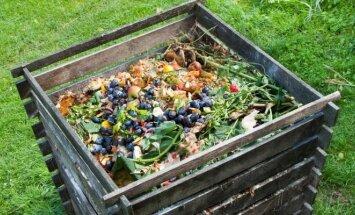 Priežastys, kodėl kompostas skleidžia negerą kvapą