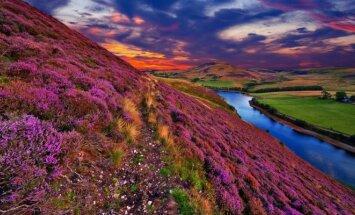 Škotija - kodėl gyvenimo kokybė joje yra geresnė nei Anglijoje?