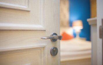 Vidaus durų pasirinkimas: medžio masyvo durys