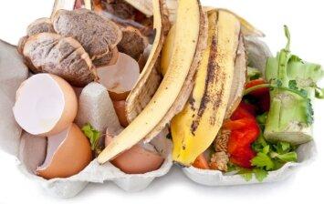 Kiaušinių lukštai augalams: ar verta juos rinkti per žiemą