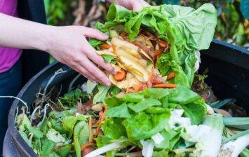 Kompostas dvokia? Specialistai pataria, kaip to išvengti