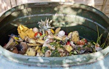 Kompostavimas: kaip atliekas paversti nauda?