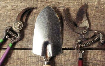 Kur ir kaip žiemą laikyti sodo techniką ir įrankius