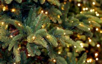 Specialistų patarimai, kaip tinkamai paruošti kalėdinę eglutę šventiniam laikotarpiui