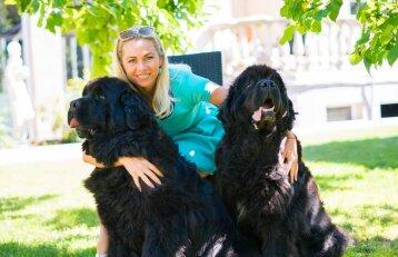 Niufaundlandai – didelės širdies šunys, netinkantys pedantams