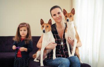 Basendžių veislės šunys apvertė šeimos gyvenimą aukštyn kojomis
