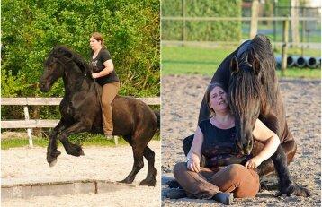 Nepaprasta moters ir žirgo bičiulystė: tapo geriausiais draugais