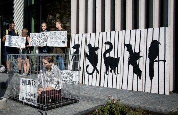 Vilniuje įvykęs zoologijos sodo atidarymas kelia audras: aktyvistai surengė protestą