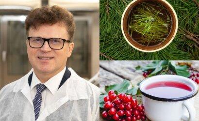 Profesorius Stukas papasakojo apie natūralius sveikatos šaltinius iš mūsų daržų, sodų, miškų – verta pabandyti kiekvienam