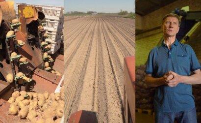 Ūkininkas: po tokių gamtos iššūkių – ir sodinti, ir auginti, ir šviežio derliaus laukti teks kiek kitaip