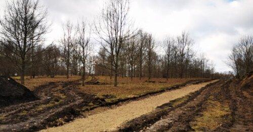 Radviliškio gyventojai džiaugsis atnaujintu pamėgtu parku