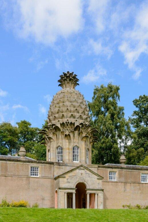 Slapta svetingumo simbolio – ananaso istorija